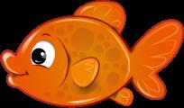 fish-2638627-300px